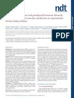 El Fosfato Sérico Alto y La Hormona Paratiroidea Regulan Claramente La Pérdida Ósea y La Calcificación Vascular en La Enfermedad Renal Crónica Experimental.