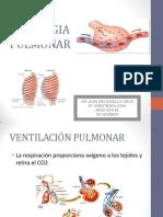 FISIOPULMON.pdf