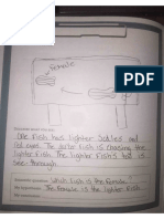 bioeyes student lab book sample