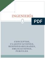 Conceptos Actualizados Ingenieria Responsab Deberes Cimeqh 2012 (1)