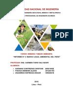Informe Medio Ambiente