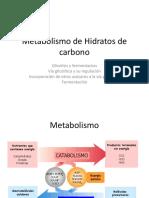 Clase 7 Metabolismo de Hidratos de Carbono (Glicolisis y Fermentacion) Biol 166 2018