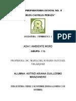 ADA 1 Astrid Guillermo
