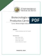 Informe Prod. Carnicos