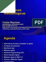 Carlos Reynoso Alternativas as en Arquitectura de Software