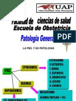 Piel y Su Patologias 2013