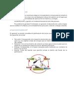 Perforadoras.cevallos Rojas Marcos Franz. Fernandez Sanchez Geylli