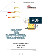 25304444 Auxiliar Curricular Materii Prime Si Materiale Cl IX