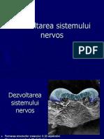 Curs 1 - sistemul nervos.ppt