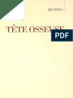 Tête Osseuse - Développement de La Tête Osseuse - Os Du Crâne