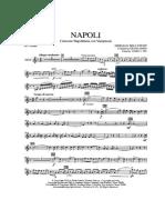 Napoli Variazioni.pdf
