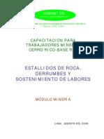 Sostenimiento pasivo y activo.pdf