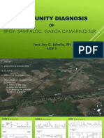 Community Diagnosis