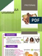 biomolécula orgánica proteínas