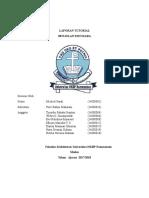 8467_laporan Kelompok III Benjolan Payudara