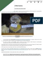 Minunea descoperirii moaștelor Sfintei Ecaterina _ Doxologia.pdf