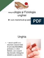 morfologia unghiei