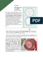 EFECTO PELICULART O SKIN.docx
