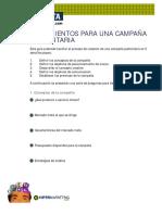 lineamientos para campana  publicitaria.pdf