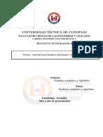 00. Plantilla Instructivo de Proyecto Integrador II 2018-18-Converted