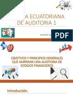 NORMA ECUATORIANA DE AUDITORIA 1.pptx