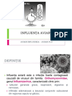 Influenta Aviara Curs 2016 (1)