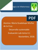 Evaluación Sub-tema4.1_Muñoz de La Cruz