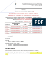 100416- Formato Pre Informe
