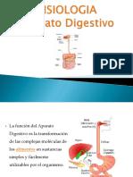 1 fisiologia Digestiva