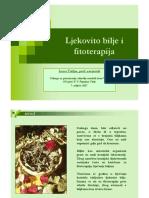 Ljekovito Bilje i Fitoterapija