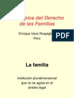 Principios Del Derecho de Las Familias CHILE (1)