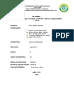 Imprimir Dendro Kati