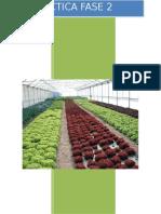 Practica Fase 2 Agricultura Biologica