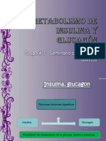 metabolismo-130504222217-phpapp01