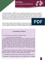 47785266-Desarrollo-del-Marco-Conceptual-de-la-Seguridad-Publica.pdf