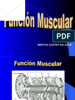 3. Función Muscular y r.