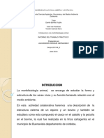 introduccionalamorfofisiologiaanimalfase12011063-140411013116-phpapp02