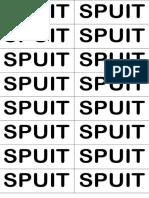 SPUIT.docx