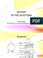 Retinoblastoma reni.pptx