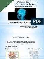 Snc y Encefalitis