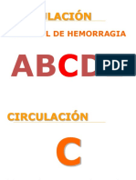 5.- circulación