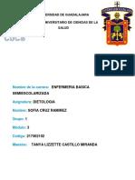 DIETOLOGIA Y COPCEPTOS.docx