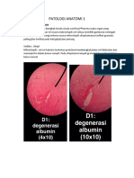 PATOLOGI ANATOMI 1 (praktikum).docx