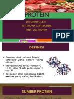 Protein Siti Novia Listiyorini