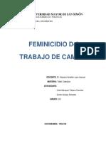 TRABAJO DEfeminicidio20188