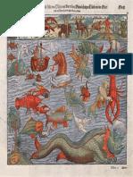 Medieval sea monsters