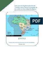 Diversidad_Biologica en Brasil