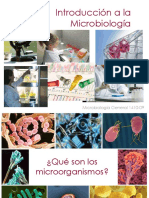 U1_IntroduccionMicrobiologia_18981.pdf