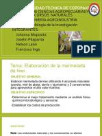 MERMELADA DE KIWI.pptx