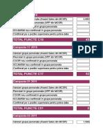 Copie a Calculator Competitie Lideri Q52010-1
